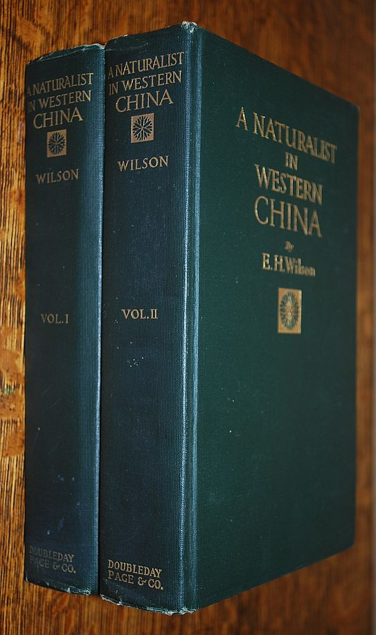 Image for A Naturalist in Western China: With Vasculum, Camera, and Gun