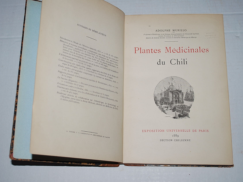 Image for Plantes Medicinales Du Chili
